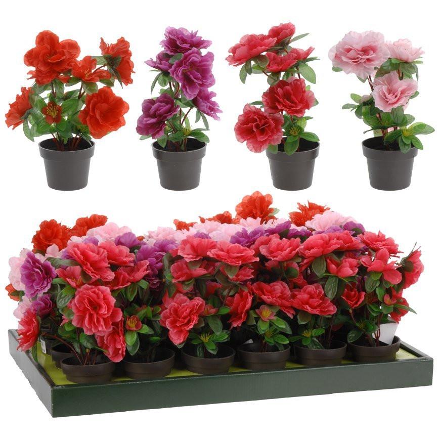 Интернет магазин каталог цветов в горшках новосибирск, букет