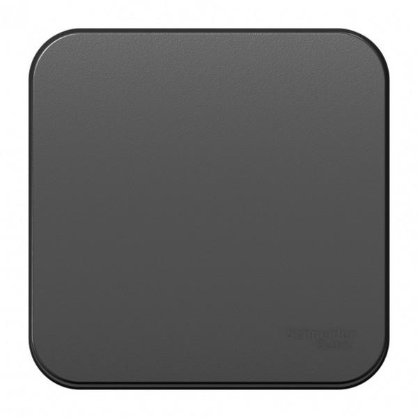 выключатель 1-клавишный se blanca наруж антрацит 10а, 250b, изолир пластина (арт. se blnva101016) выключатель schneider electric blanca blnva101016 одноклавишный с изолирующей пластиной антрацит