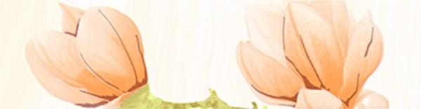 бордюр la favola крема в 25*6,5 крема либридерм купить