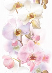 Декор Tropicana Orchids белый 25*35 /15,0/