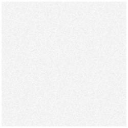 Обои С6-376Д Снежный 03 дупл. 0,53*10,05м потолочные, белый