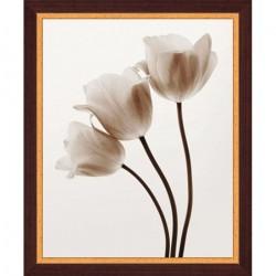 Картина Цветы ч/б WG 4150/40*50 4607158141393