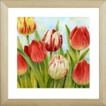 Постер МС-68/40*40 Тюльпаны