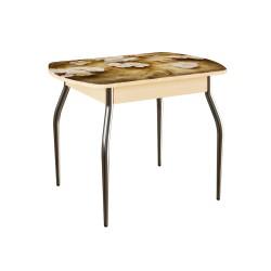 Стол обеденный Мовилл 1000х700х750 с фотопечатью