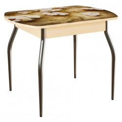Стол обеденный ЛДСП Фотопечать Венге светлый/Ветки яблони (1,0*0,7*0,75)